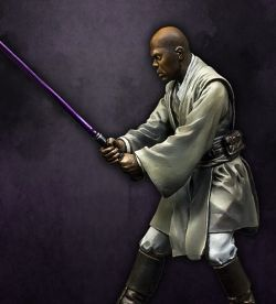Mace Windu- 75mm Official BoxArt