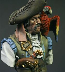 Pirate and the Parrot