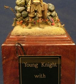 Young knight with horse