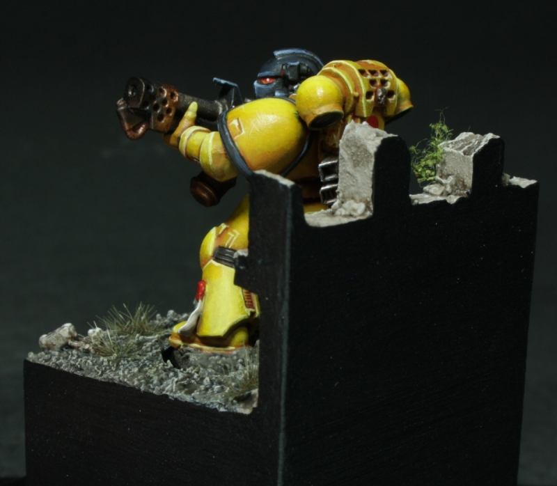 Space Marine Imperial Fist