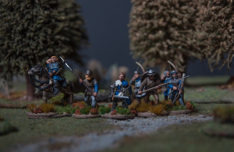 Human warband (Song of Blades&Heroes;)
