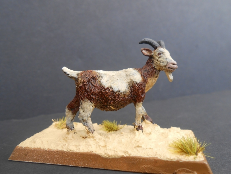 28mm Goat. Reaper Miniatures