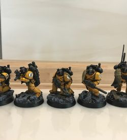 Imperial Fists Scout Unit