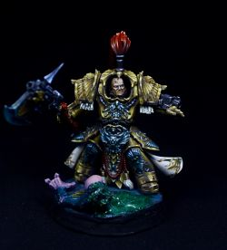 Shield Captain in Allarus Armour