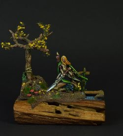 Highborn of the Wood Elves