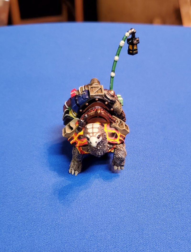 Nipper the Volcanic Riding Tortoise