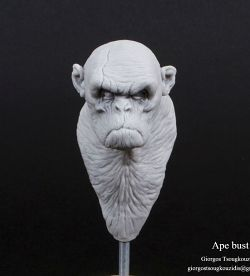 Primate bust