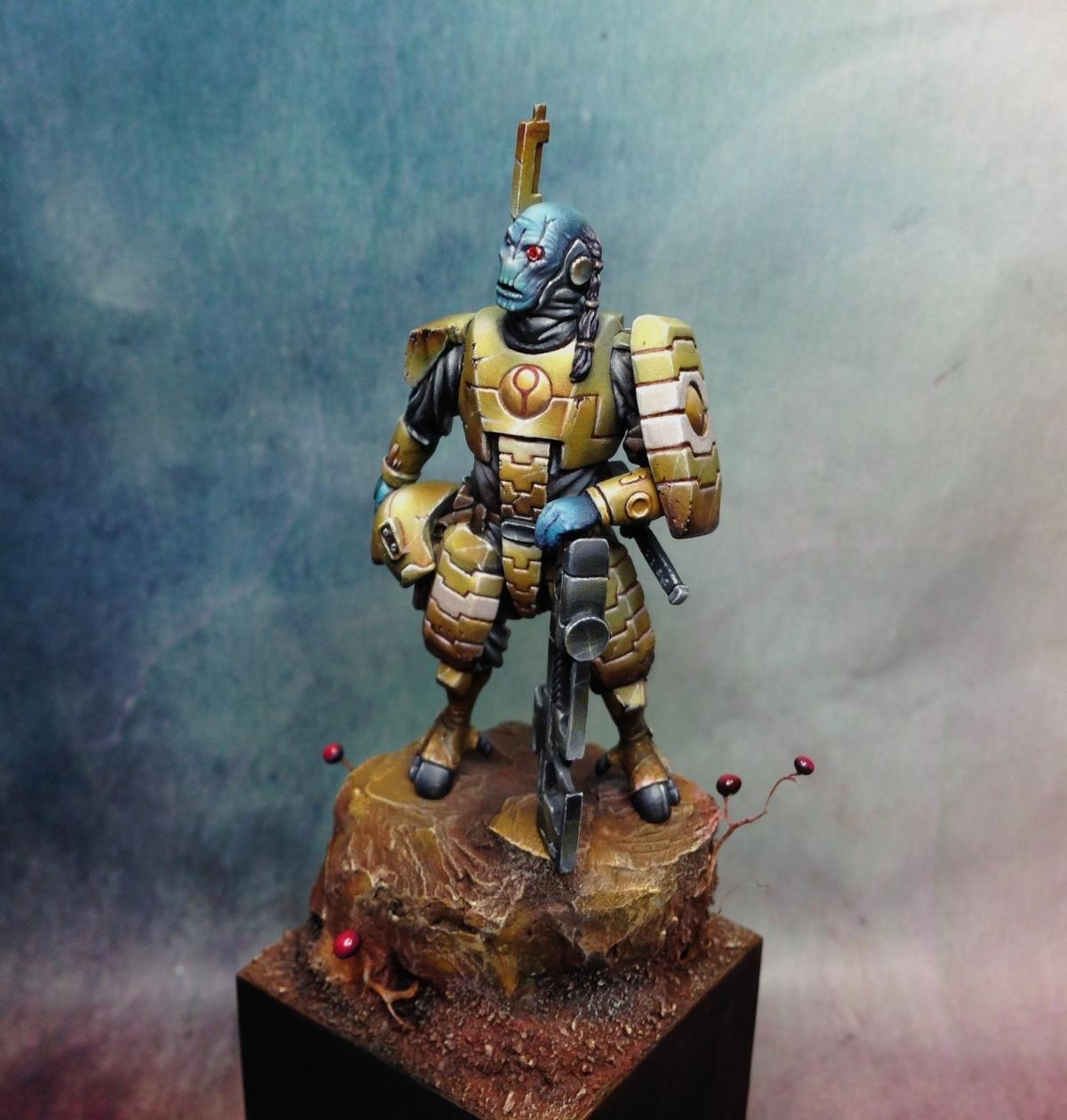 Tau Fire Warrior 54mm By Robert Karlsson 183 Putty Amp Paint